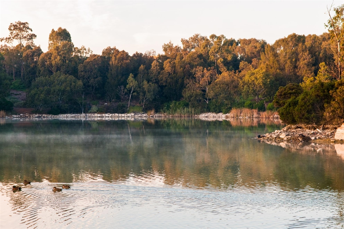 Newport Lakes High Res (90).jpg